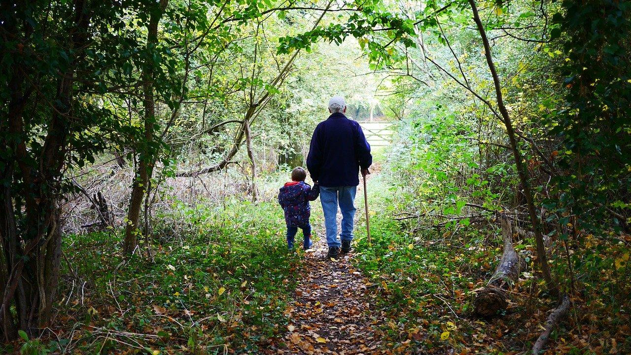 Grand-père se promenant avec son petit enfant dans la forêt